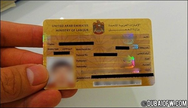 UAE Labor card