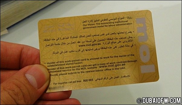 UAE ministry of labour card