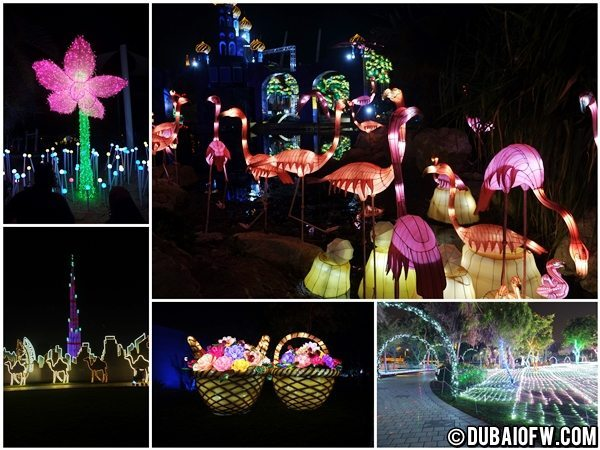 Dubai Garden Glow photos