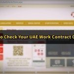 How to View Your UAE Labour Contract Online