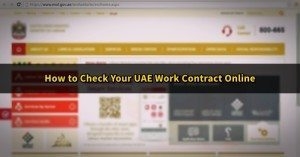 Ministry of Labour work contract online