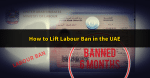 Lifting the UAE Labour Ban