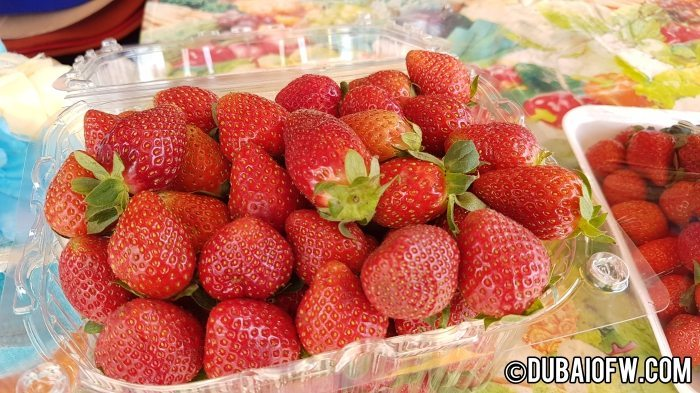 fresh strawberries from baguio