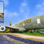 Dubai Miracle Garden's Emirates A380 Declared World's Largest Flower Installation