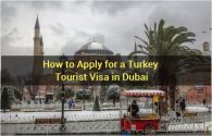How to Apply for a Turkey Tourist Visa in Dubai
