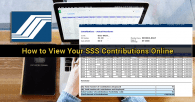 How to View Your SSS Contributions Online