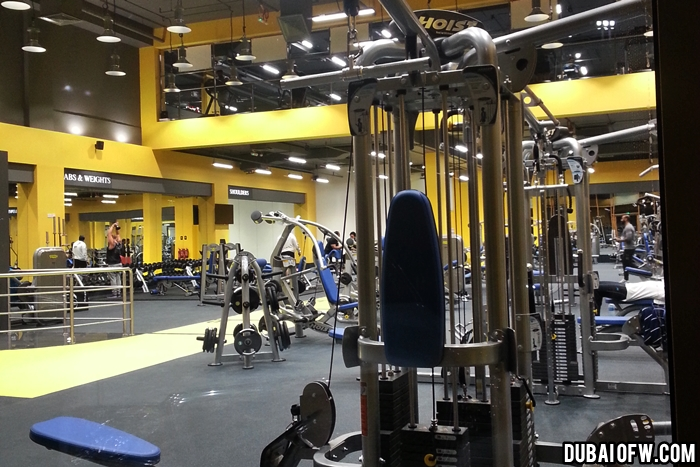 toronto body building gym sharjah