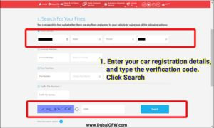 how to pay traffic fines online