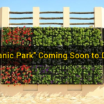 """Quranic Park"" Coming Soon to Dubai"