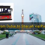 How to Travel from Dubai to Sharjah via Public Bus Transport
