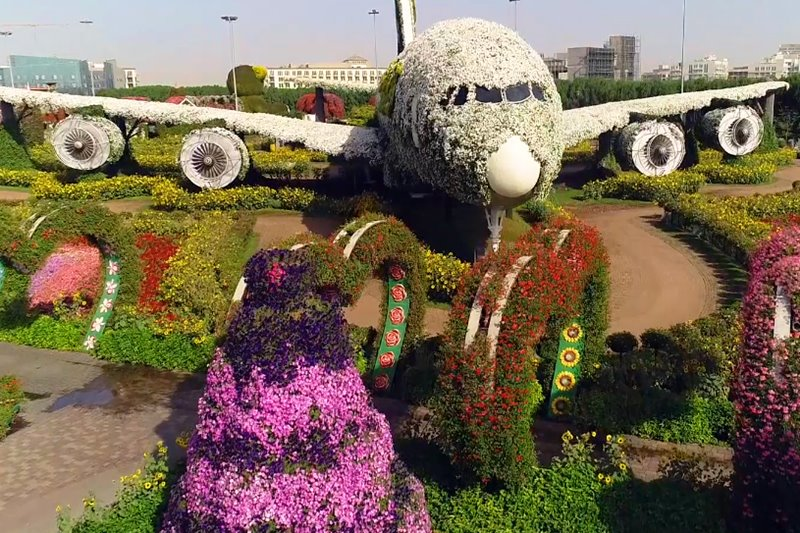 dubai flower garden a380 airplane