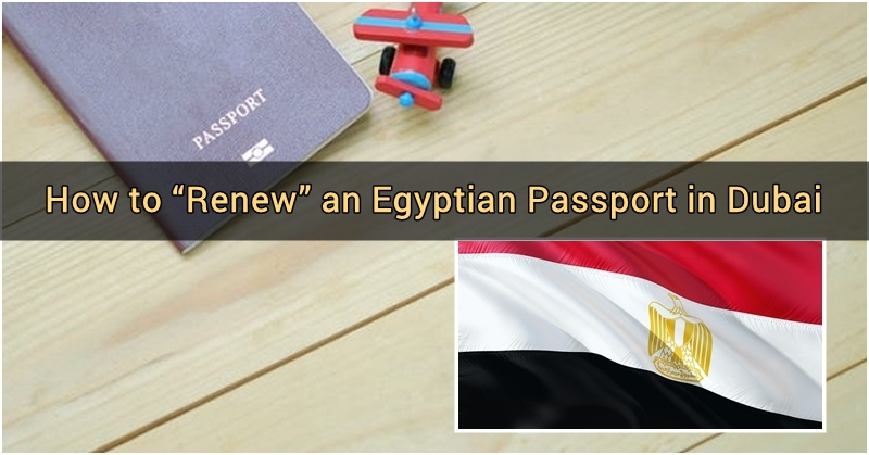 how to renew egyptian passport in dubai 3