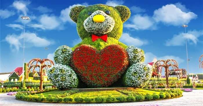 miracle-garden-teddy bear flower