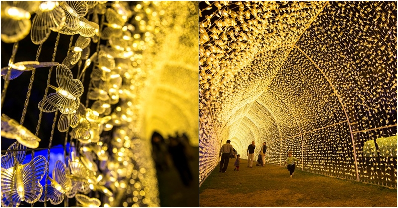 Catch FREE Shows at Sharjah Light Festival from Feb. 6 to 16 10 e