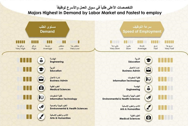 Most In Demand College Majors in the UAE 1