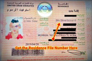 how to check the visa status validity online uae
