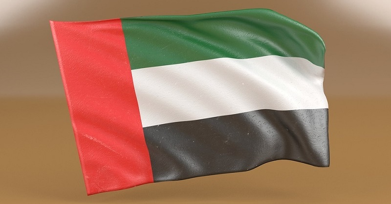 How to Apply for UAE Citizenship 1