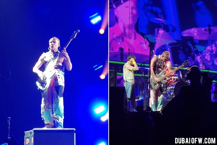 Flea Red Hot Chili Peppers