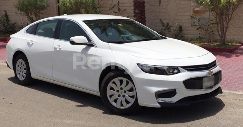 economy car white chevrolet malibu uae rent