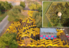 Wonder Maze, World's Largest Mobile Maze, Opens in Dubai and Al Ain