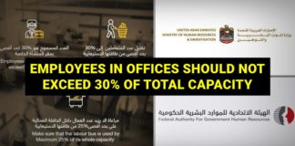 uae public private workforce 30 percent only