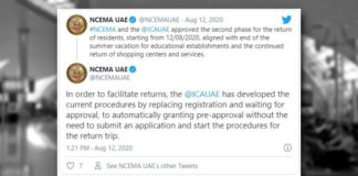 No Need for Entry Permits from ICA to Return to the UAE