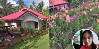 ofw in dubai housemaid builds house and flower business