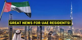 uae new projects visa reform